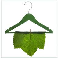 Is Green Dry Cleaning safe?